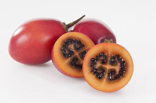 Tamarillo Large Red