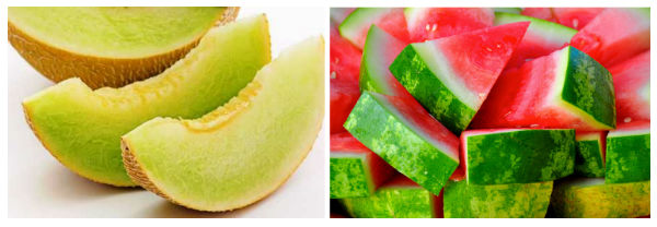 sliced melon and watermelon