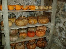 pumpkin storage