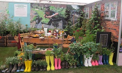 Canterbury Community Gardens at Ellerslie