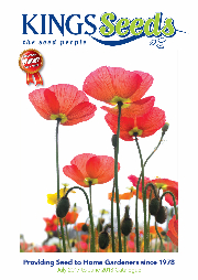 Kings-Seeds-17-18-Catalogue-Product-Image-305
