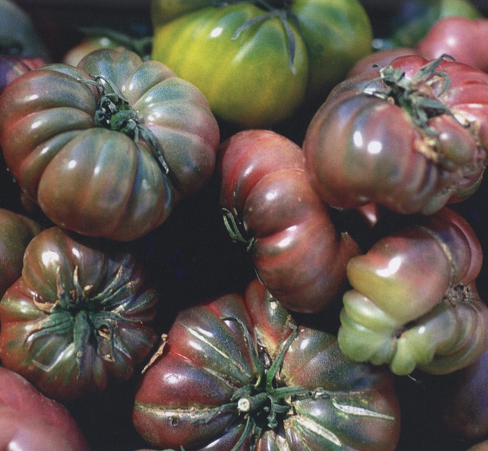 tomato black krim heirloom tomatoes vegetable groups kings seeds nz ltd. Black Bedroom Furniture Sets. Home Design Ideas